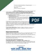 2º Elemento Do Processo Administrativo