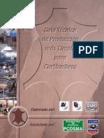GuiaTecPMLCurtiembres.pdf