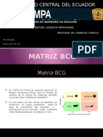 Matriz Bcg1