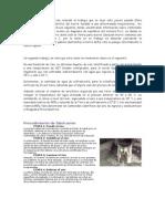 Procedimiento de fabricación.docx