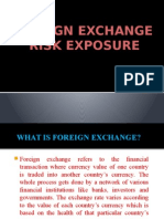 Foreign Exchange Risk Exposure.pptx