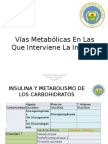 Vías Metabólicas en Las Que Interviene La Insulina