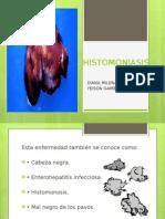 histomoniasis-110511164709-phpapp02
