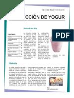 Producción de Yogur
