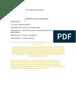 SUBSISTEMAS DE POLITICAS.pdf