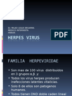 2º Clase Herpes Virus