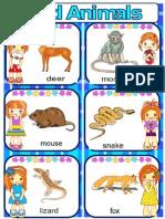 Wild Animals Part2