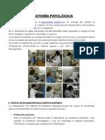 Anatomía Patològica Emilio