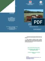 suplementacion bovinos para carne.pdf