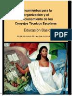 9 Lineamientos_CTE_13-14 PP 10 y 11