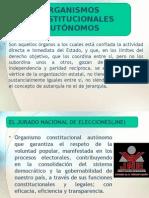 Presentación1 (3) TORTUGA