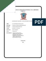 CONTAMINACION DEL SUELO.docx