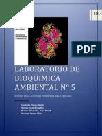 Laboratorio de Bioquimica Nº5 Grupo A