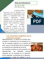 MINERALES ORGANICOS.pptx