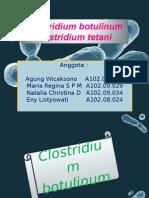 Bakteri Clostridium