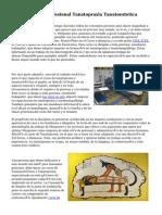 Curso Tecnico Profesional Tanatopraxia Tanatoestetica