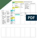Matriz de Proyecto Modelo