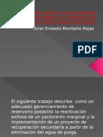 Manejo Integral de Yacimientos Madurosyacimiento El Porvenir