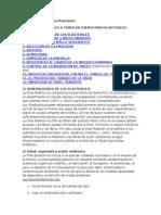 Generalidades de Los Plastisoles