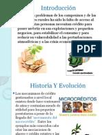 Historia Del Microcrédito - Copia