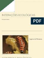 ecologia_interaçoes