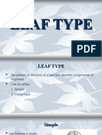 LEAF TYPE 7