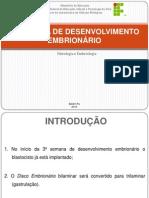 Embriologia - 3 semana.pdf