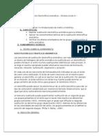 Sustitución Electrofilica Aromática – Síntesis Acido m - Nitrobenzoico