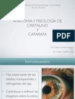 Anatomia Cristalino PDF