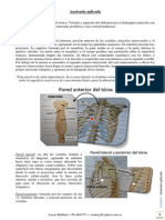 02 Anatomia Aplicada