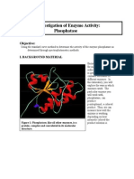 Enzyme Activity Phosphatase