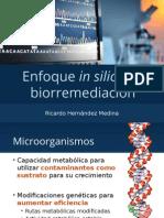 Enfoque in silico en biorremediación