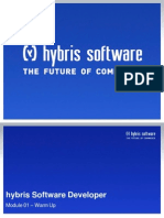 Hybris Software Developer - Warm Up