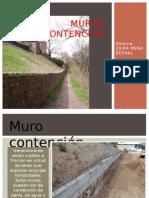 muros-131012235118-phpapp01.pptx