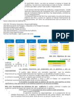 Resumen Normas y ProcNormas y procedimiento de auditoriaedimientos de Auditoria