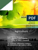 AGRICULTURA.pptx