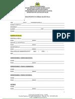 Diagnóstico Geral da Escola 2015.doc