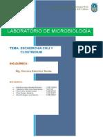 Escherichia Coli y Clostridium