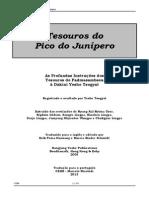 Padmasambava - Tesouros do Pico do Junípero