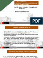 """Segundo Webinar  """"NEGOCIOS DE CARBONO Y CONSERVACIÓN DE ÁREAS NATURALES PROTEGIDAS"""""""