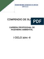 SílabusAmbiental.pdf
