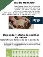 Proyecto Semillero de Quinua