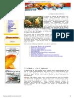 Elgoldfish Manual Completo