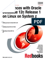 Oracle 12 c Linux Ibm Experiences