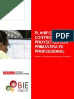 P6 ppm