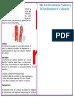 Diptico Enfermedades Del Sitema Circulatorio 2
