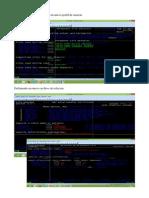 escenario_03_rdx.pdf