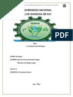 Contaminacion Del Agua - Dr. Antonina