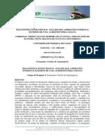 Diagnóstidiagnostico para planejamento estrategicoco Estratégico Análise Dos Ambientes Interno e Externo de Uma Agroindústria Goiana