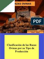 2-Razas y Etapas de cabras
